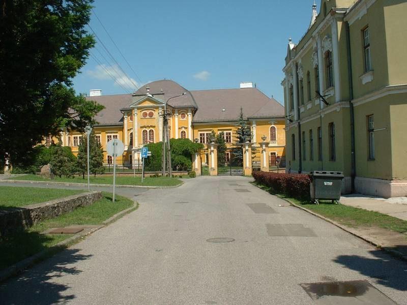 Az Ady Endre utca a rehabilitáció előtt