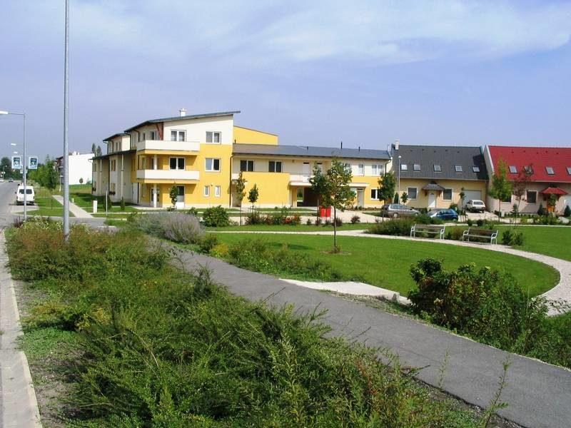 Pakorsítot zöldfelület az új lakóterület közterületén